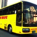 はとバスで東京観光!定番人気コースをピックアップ!