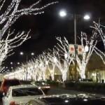 2013年の表参道クリスマス「イルミネーション」おすすめスポット!期間・点灯時間帯・地図をチェック!